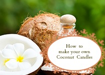 Make your own coconut candles.