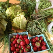 Community Supported Agriculture (CSA) Bounty